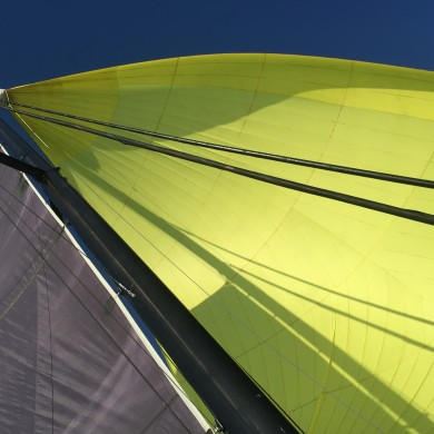 Big Spinnaker - yellow like the sun (3)