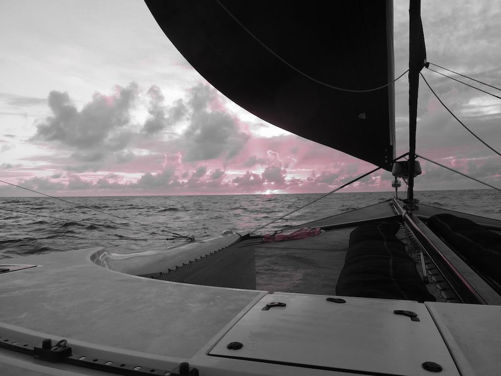 Black & pink sunset