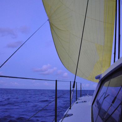 Big yellow spinnaker