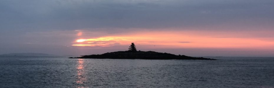 Sunrise in Maine Island with one singe tree