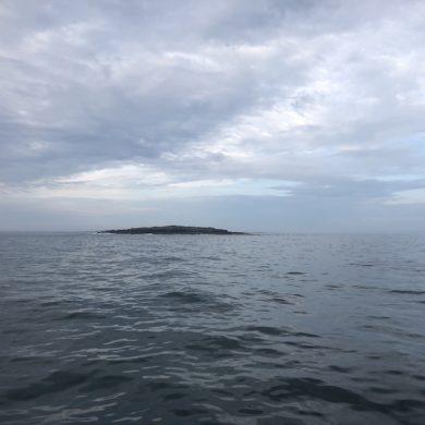 Tiny island or rocks