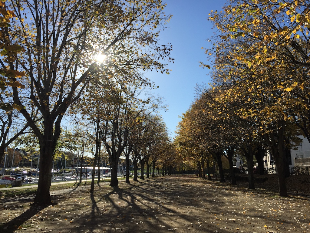 vannes-in-fall-3
